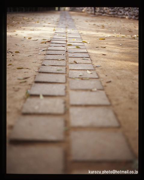 Footsteps_01